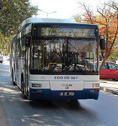 EGO Bus.jpg
