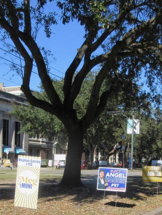Quatre années de plus pour la maire Cantrell ?