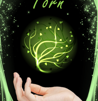 Torn: Chapter Three