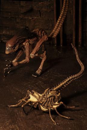 a3-creature-7jpg
