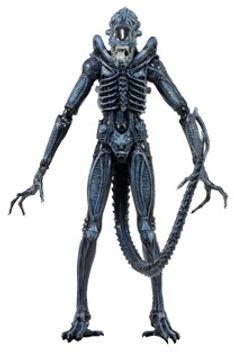Alien Warrior, Blue