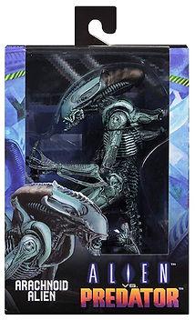 Arachnoid Alien