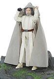 Star Wars Black Series Luke Skywalker on Ahch-To Island