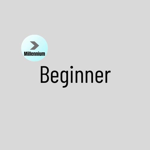 Beginner 1