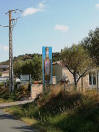 Huile d'Olive - Saint Jean de Barrou