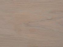 Cornsilk on English Oak