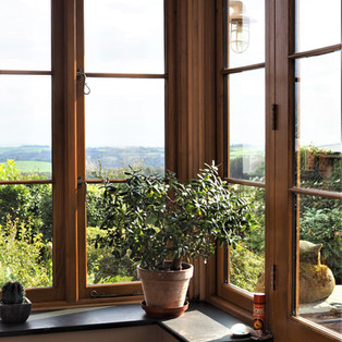 Windows with a view