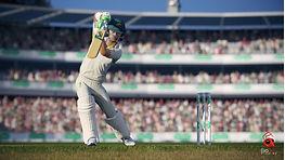 cricket-19-1.jpg