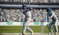 cricket 19.jpg