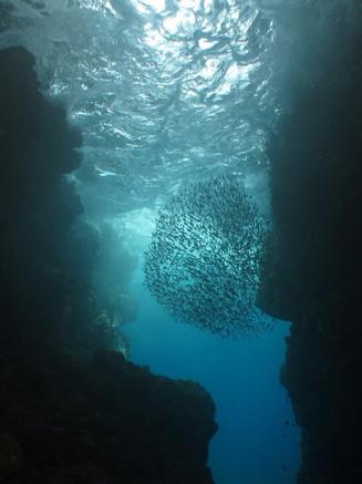 Grotte zozio