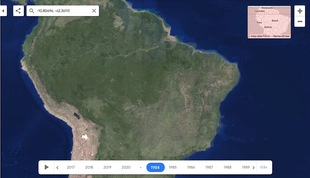 An image from Google Earth shows the forest area in Brazil in 1984