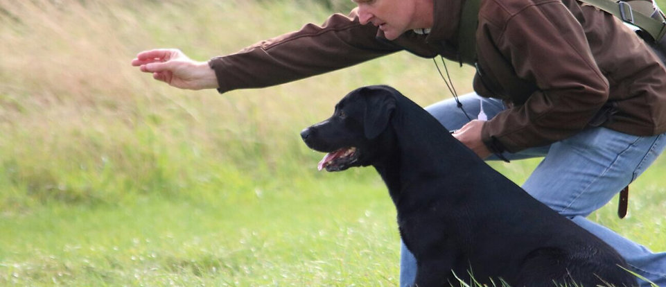 A dog being instructed by its master
