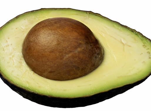Avocados: A Legitimately Healthy Food Craze