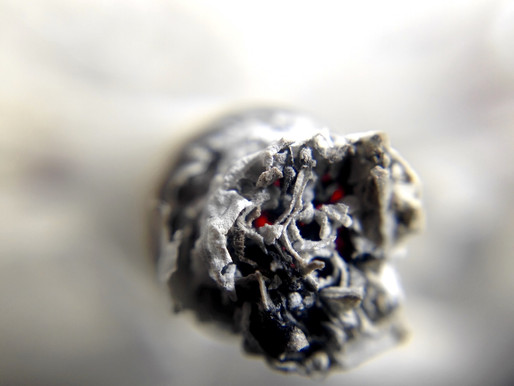 Celebrate World No Tobacco Day by Learning About Smoking Cessation