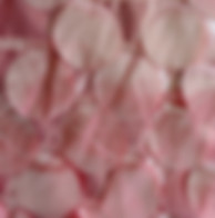 Pink Coral Peach Round Circle Petal Tabl