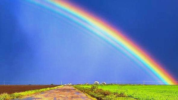 rainbow_edited_edited.jpg
