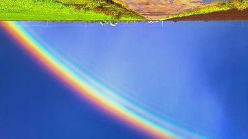 rainbow_edited_edited_edited.jpg