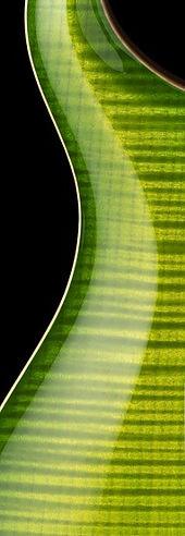 eriza-verde.jpg