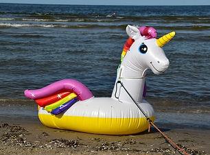 Unicorn inflatable.jpg