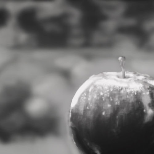 Black and White Apple Painting I made!!.
