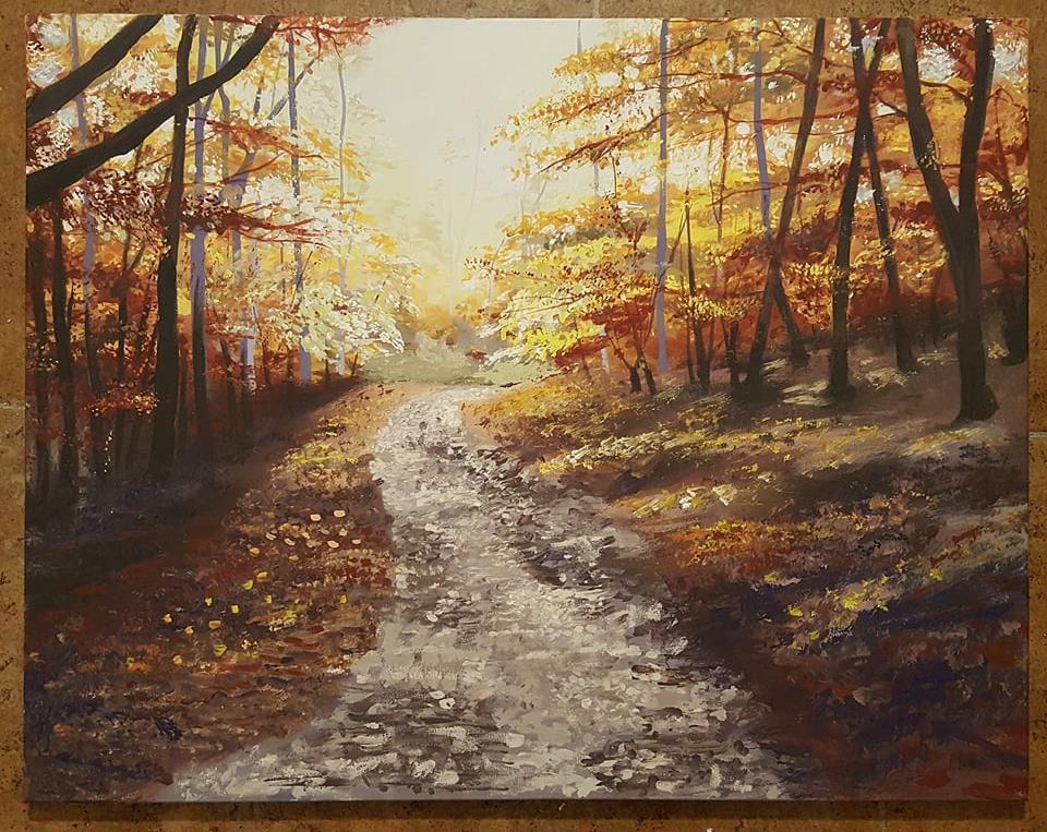 2017, November, Forest Trail.jpg