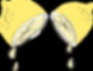 lemons-511479_960_720.png