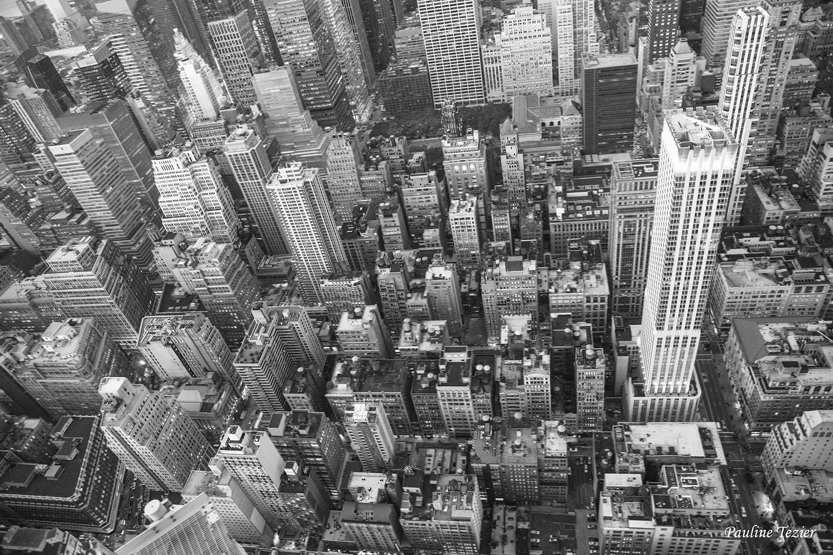 New York   Pauline Tezier