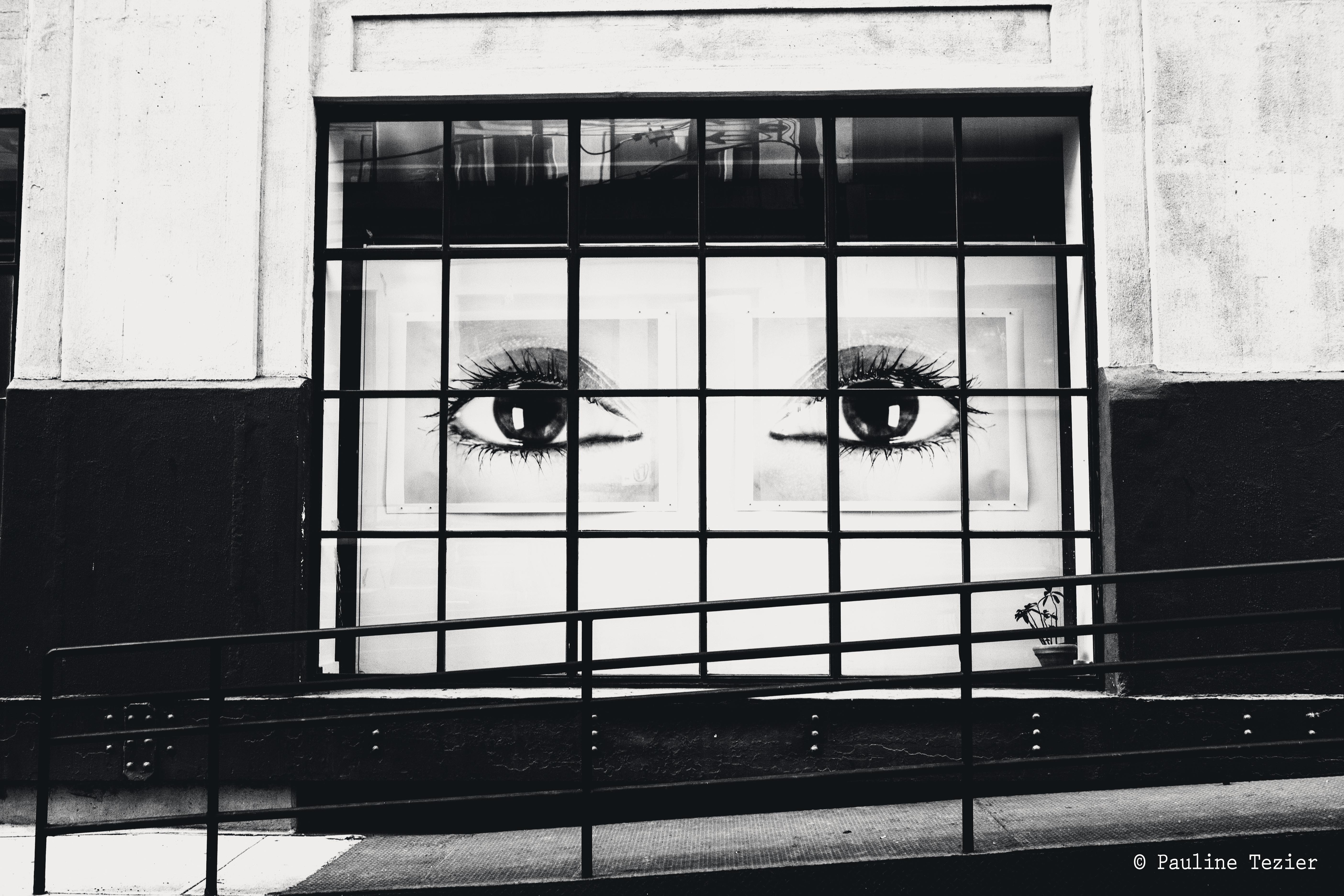 New York | Pauline Tezier