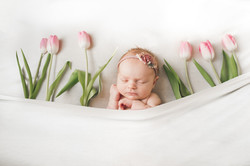 Jessicalkphotography-900-7