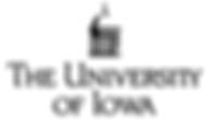 university of iowa 2.png