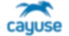 cayuse logo.png