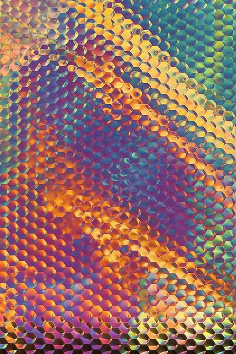 Microscopic Imitations_04.jpg