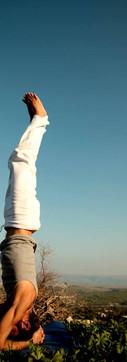Yoga Man Head