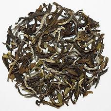 Sikkim Spring Oolong Tea bermiok ketlee.in