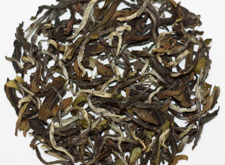 Free Samples with Sikkim Spring Oolong Tea