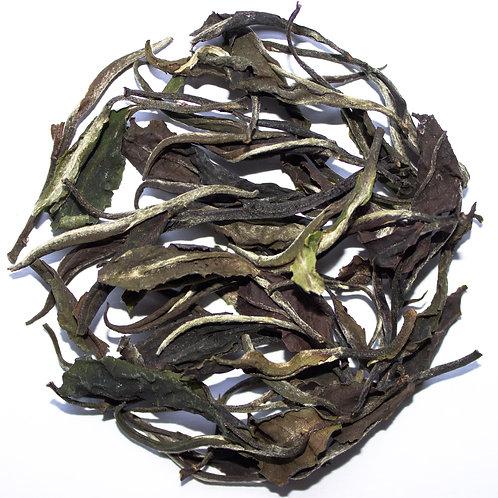 Orthodox Smoked White Tea