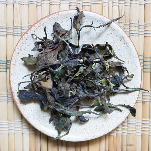 2019 Autumn Wild White Tea