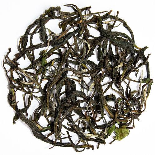 Nilgiri Highland Black