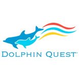 North Shore Ocean Fest Partner Dolphin Q