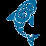 shark_blue.png