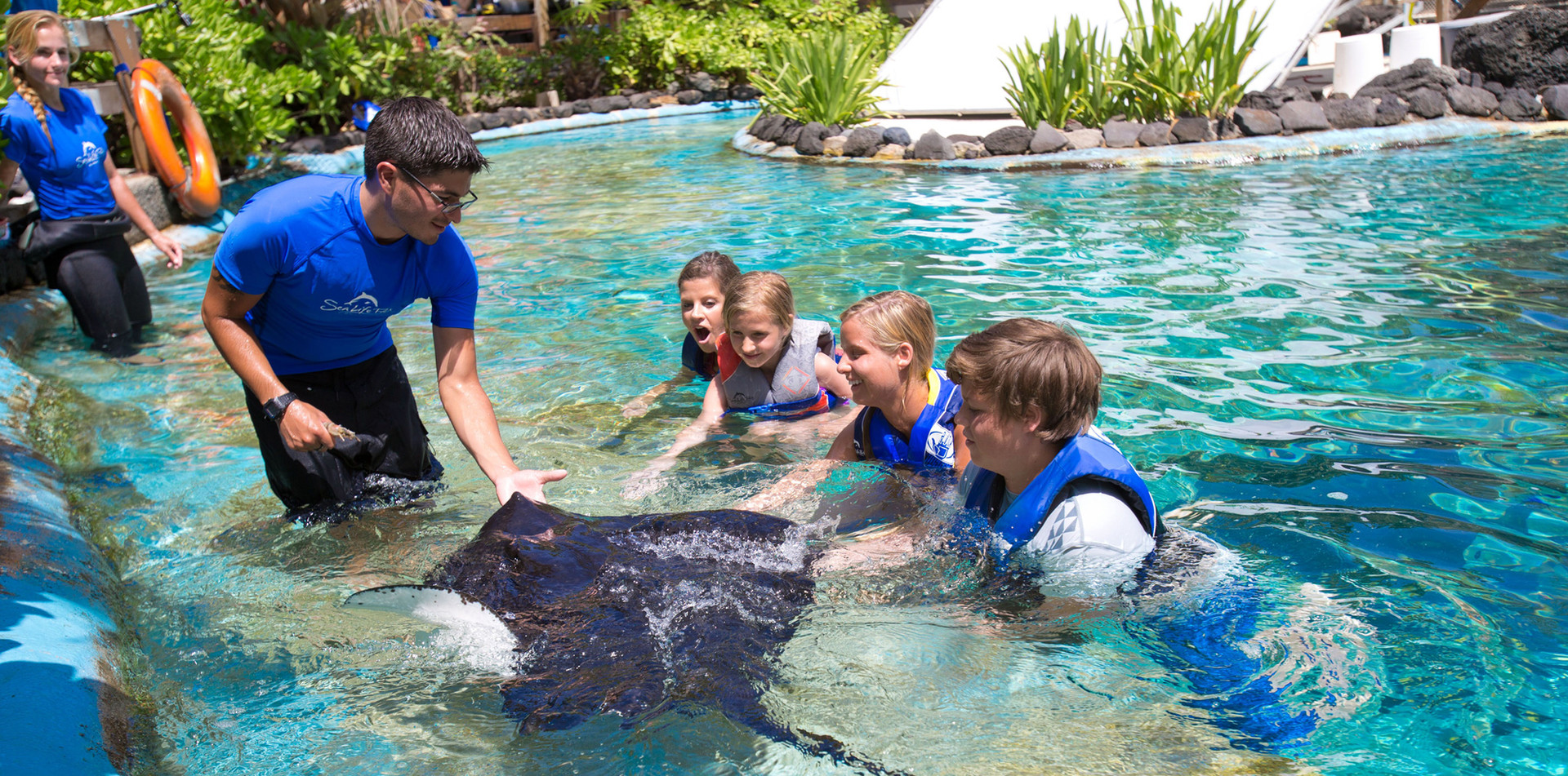 SeaLifeParkHawaii_stingray.jpg