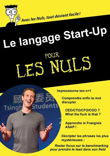 startup pour les nuls.png
