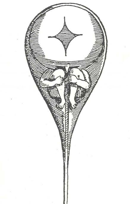 1.homunculus.png
