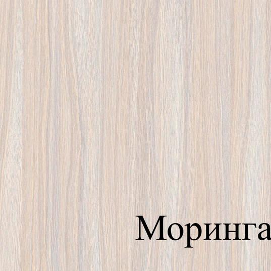 МОРИНГА.jpg