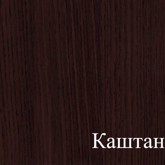 КАШТАН.jpg