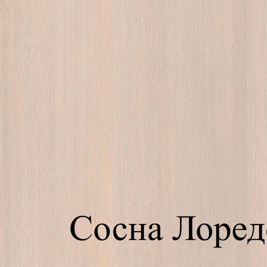 СОСНА ЛОРЕДО.jpg