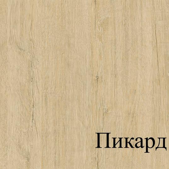 ПИКАРД.jpg