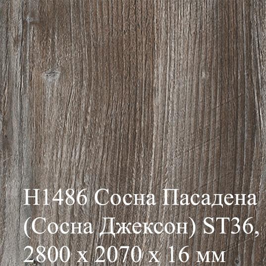 H1486 Сосна Пасадена (Сосна Джексон) ST3