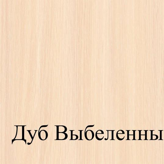ДУБ ВЫБЕЛЕННЫЙ.jpg