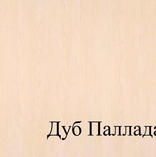 ДУБ ПАЛЛАДА.jpg
